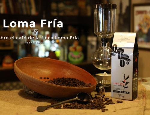 Paralelo 13: Cafés de calidade de comercio ético